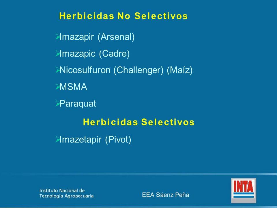 Herbicidas No Selectivos