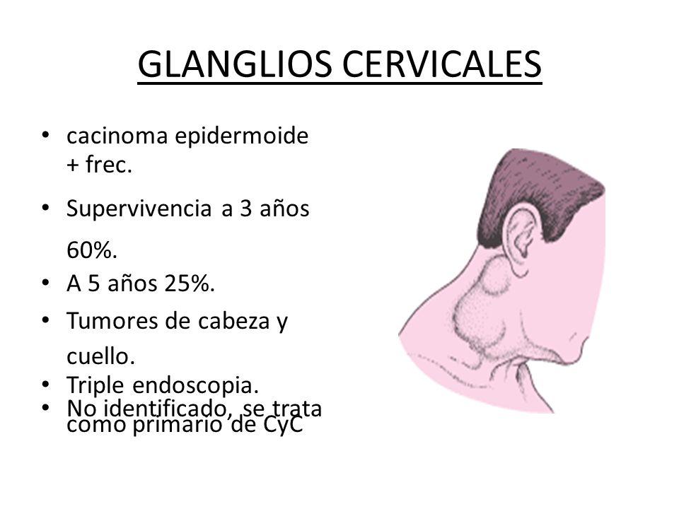 GLANGLIOS CERVICALES cacinoma epidermoide + frec.