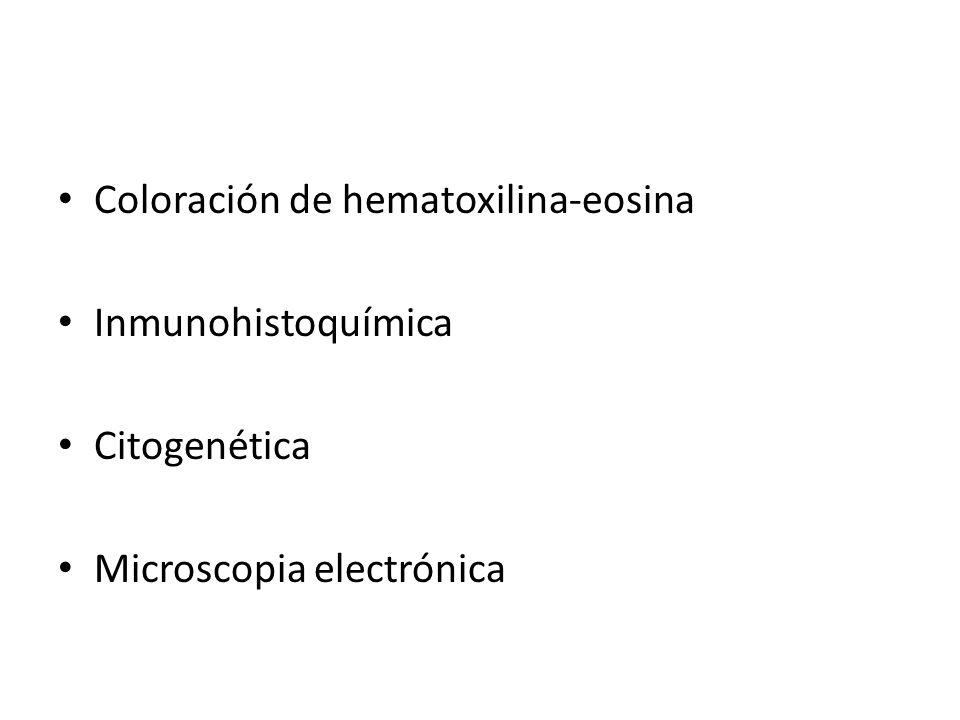 Coloración de hematoxilina-eosina