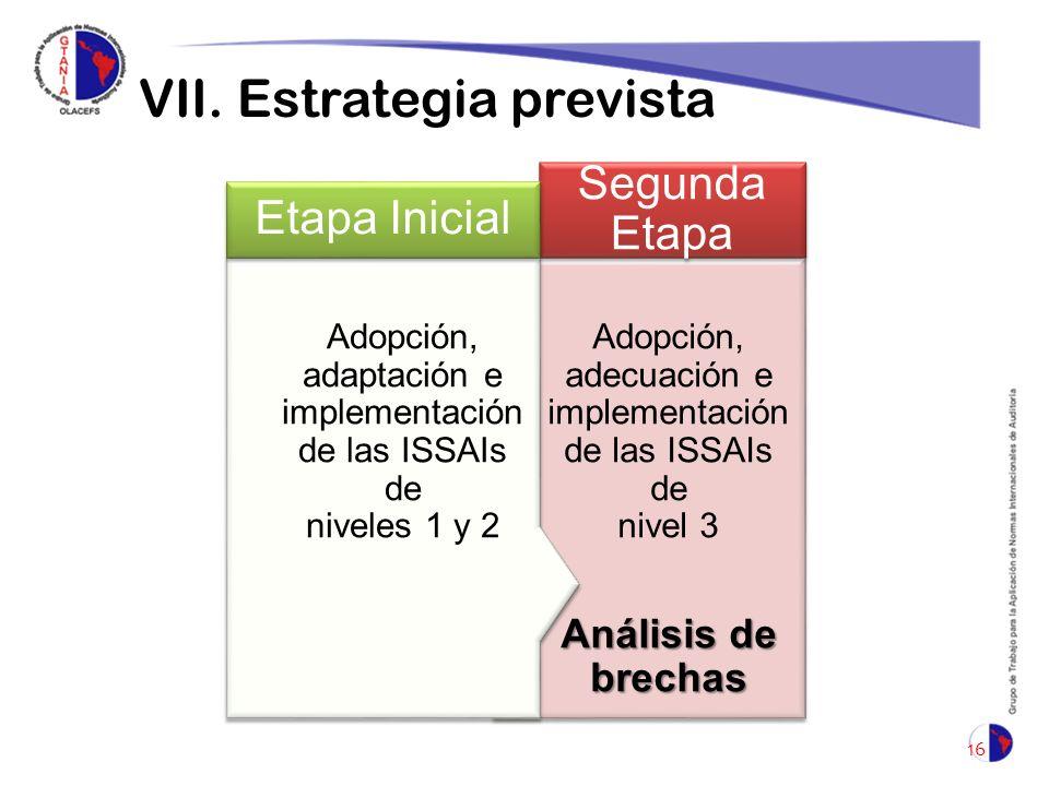VII. Estrategia prevista