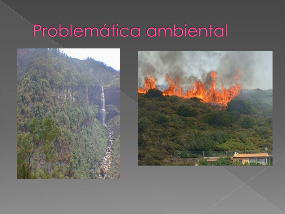 Problemática ambiental