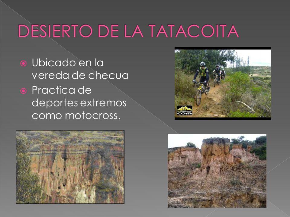 DESIERTO DE LA TATACOITA