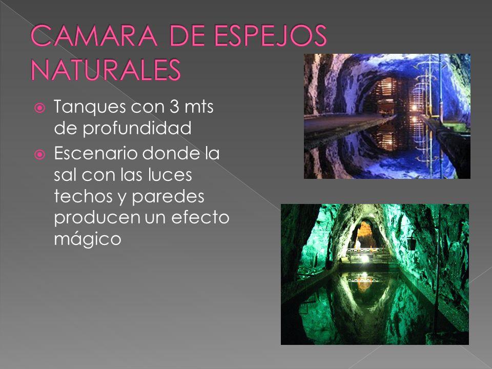 CAMARA DE ESPEJOS NATURALES