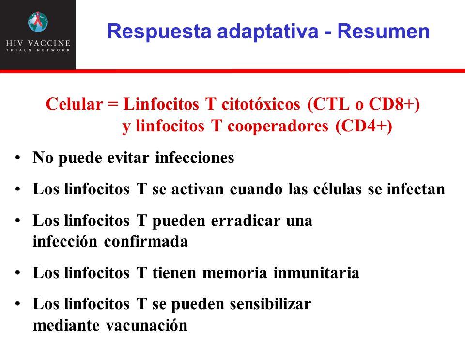 Respuesta adaptativa - Resumen