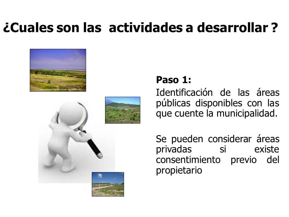 ¿Cuales son las actividades a desarrollar