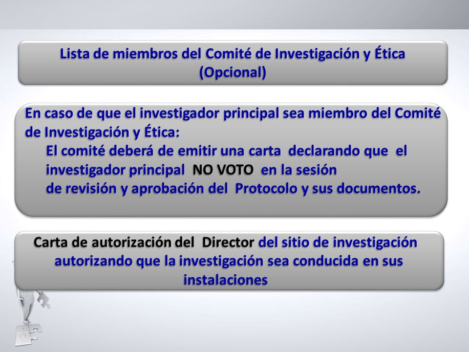 Lista de miembros del Comité de Investigación y Ética (Opcional)