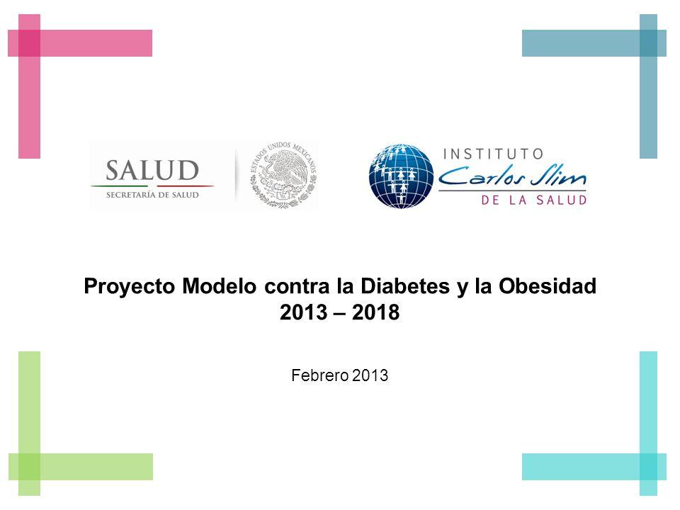Proyecto Modelo contra la Diabetes y la Obesidad 2013 – 2018