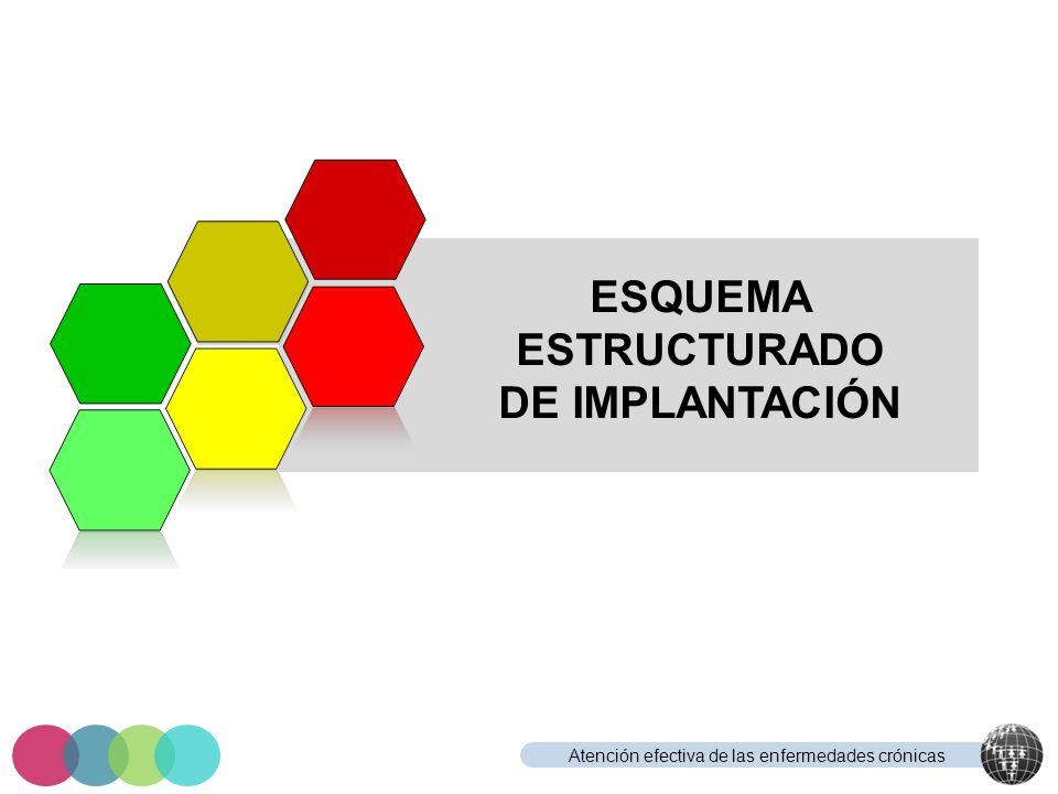 ESQUEMA ESTRUCTURADO DE IMPLANTACIÓN
