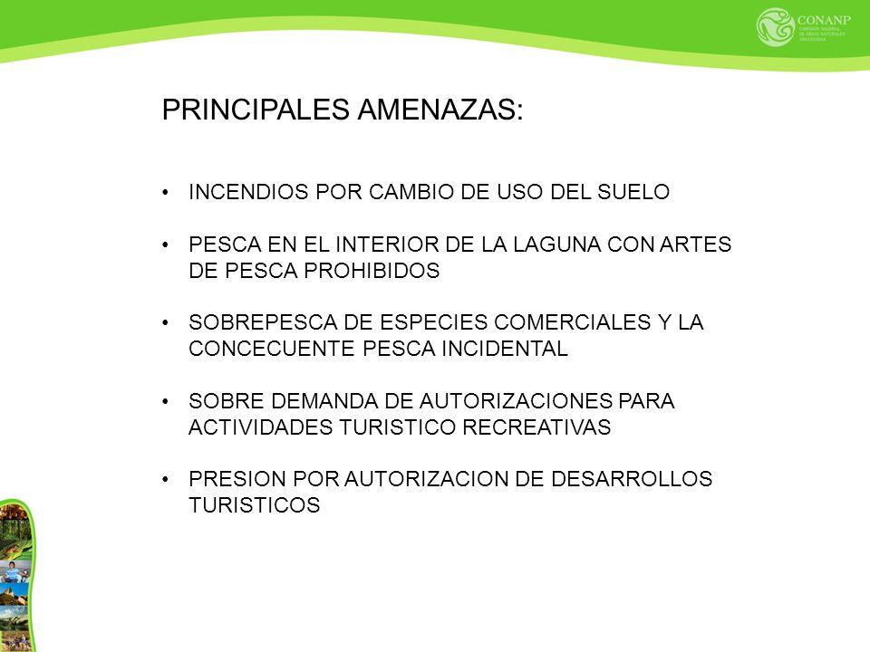 PRINCIPALES AMENAZAS: