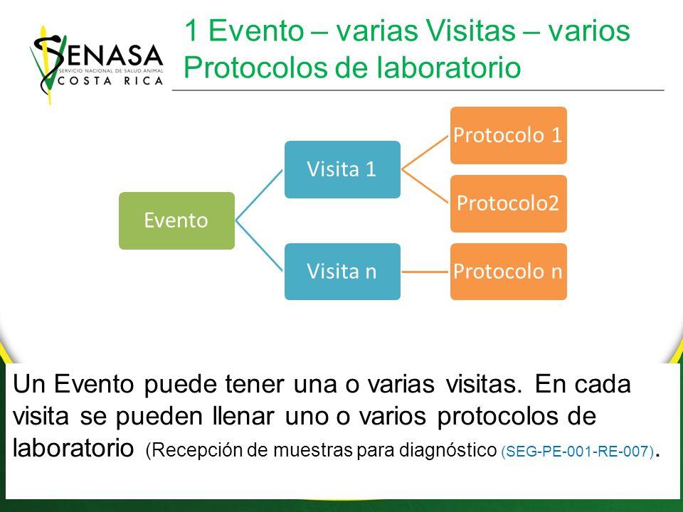 1 Evento – varias Visitas – varios Protocolos de laboratorio