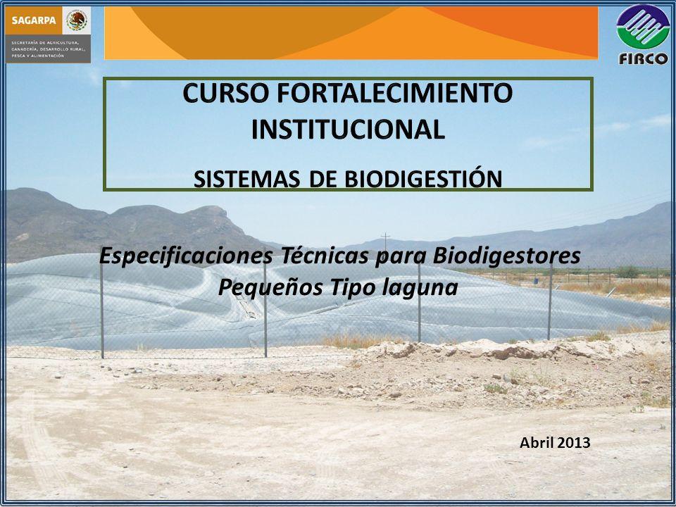 CURSO FORTALECIMIENTO INSTITUCIONAL SISTEMAS DE BIODIGESTIÓN