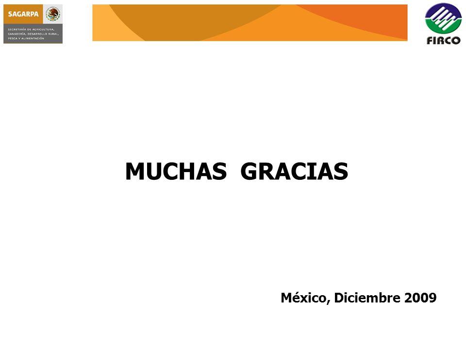 MUCHAS GRACIAS México, Diciembre 2009