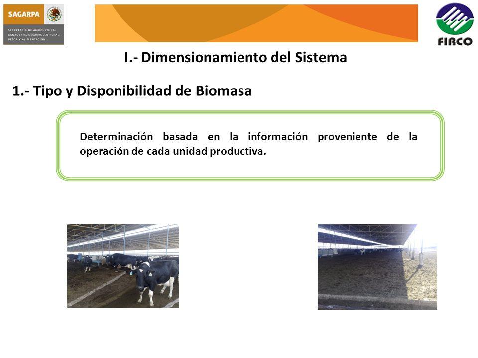 I.- Dimensionamiento del Sistema