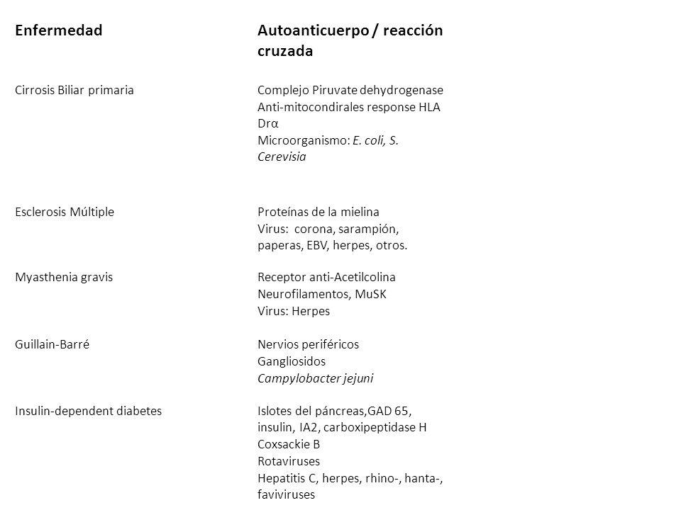 Autoanticuerpo / reacción cruzada