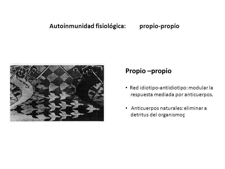 Propio –propio Autoinmunidad fisiológica: propio-propio