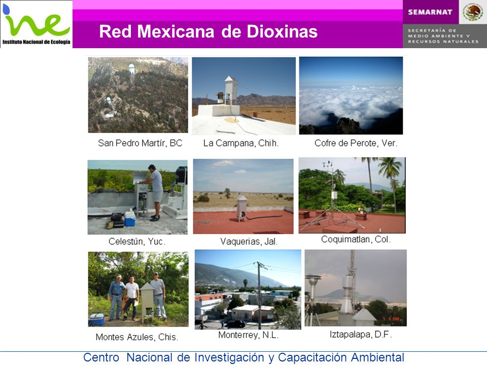 Red Mexicana de Dioxinas