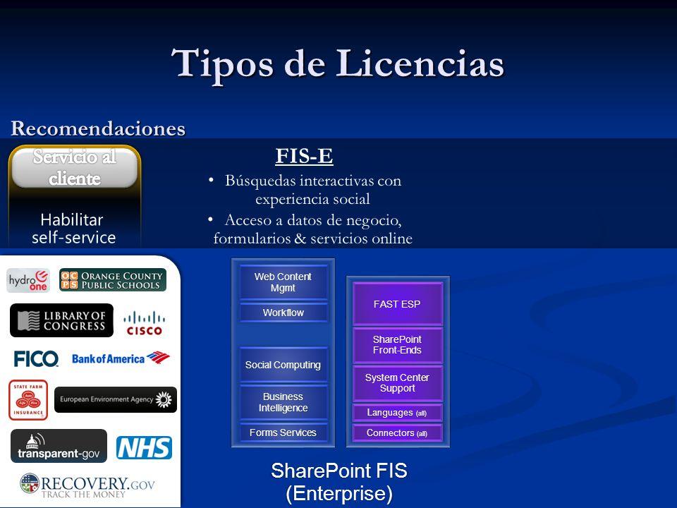 Tipos de Licencias Recomendaciones FIS-E Servicio al cliente