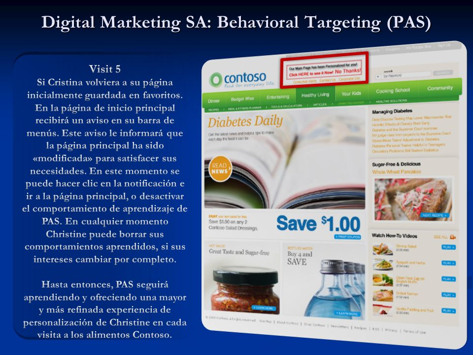 Digital Marketing SA: Behavioral Targeting (PAS)