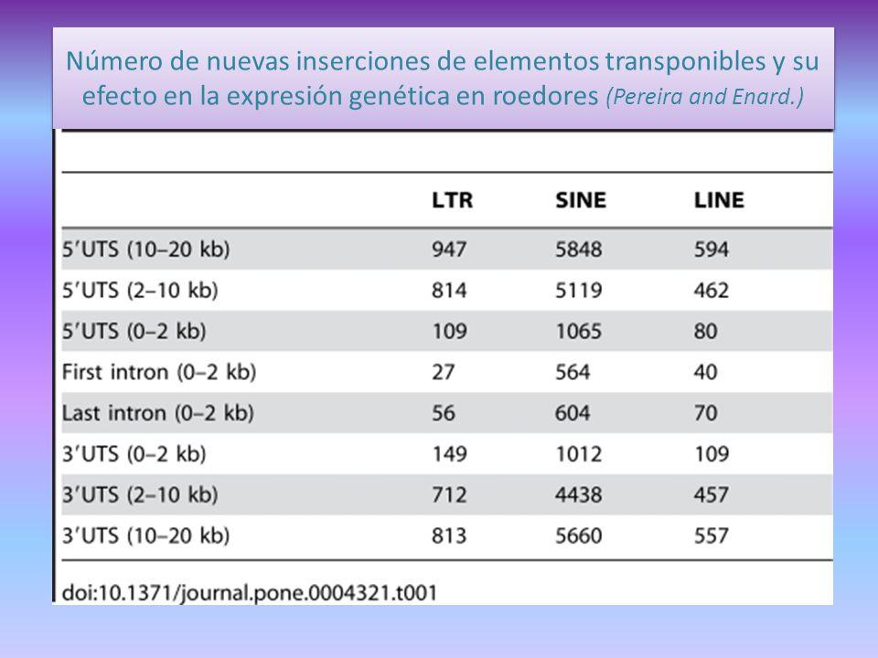 Número de nuevas inserciones de elementos transponibles y su efecto en la expresión genética en roedores (Pereira and Enard.)