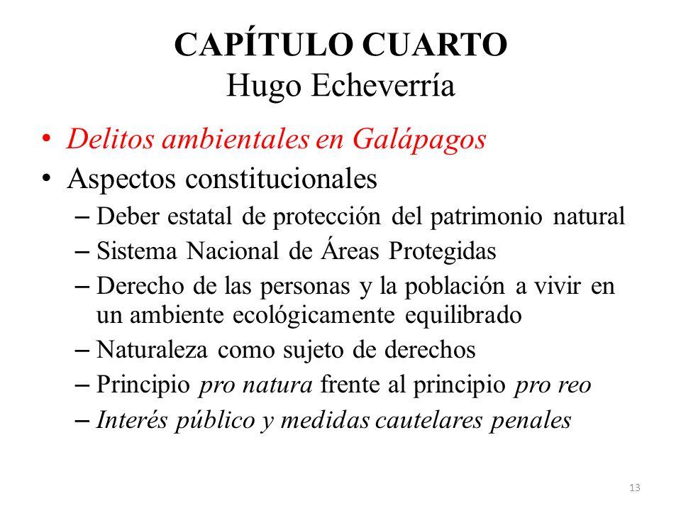 CAPÍTULO CUARTO Hugo Echeverría