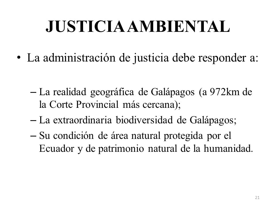 JUSTICIA AMBIENTAL La administración de justicia debe responder a: