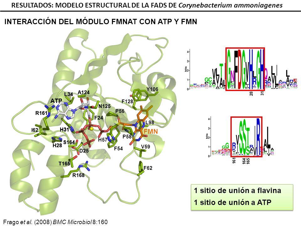 INTERACCIÓN DEL MÓDULO FMNAT CON ATP Y FMN