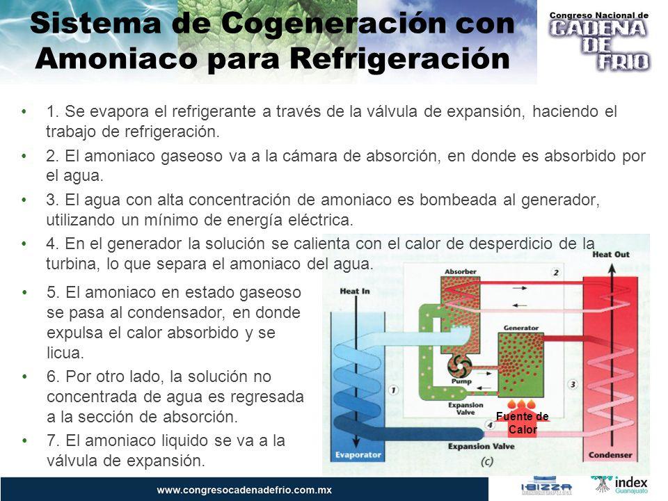 Sistema de Cogeneración con Bromuro de Litio