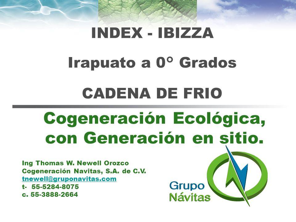 Presentación Generación Eléctrica Limpia con Microturbinas Capstone.