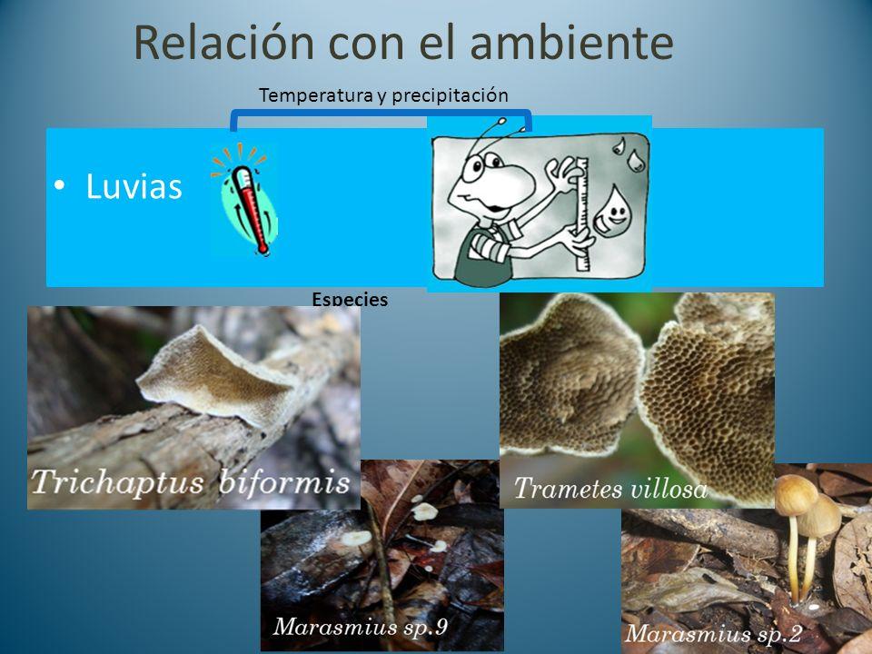 Relación con el ambiente