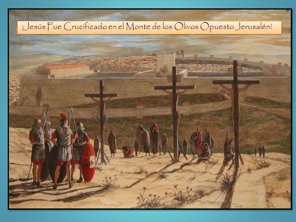 ¡Jesús Fue Crucificado en el Monte de los Olivos Opuesto Jerusalén!
