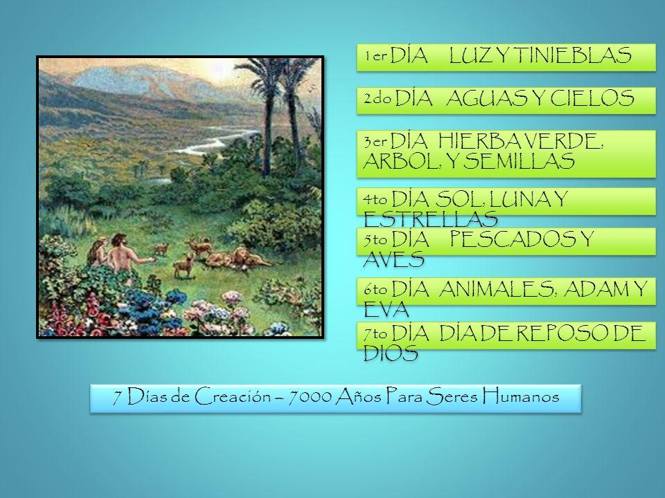 7 Días de Creación – 7000 Años Para Seres Humanos