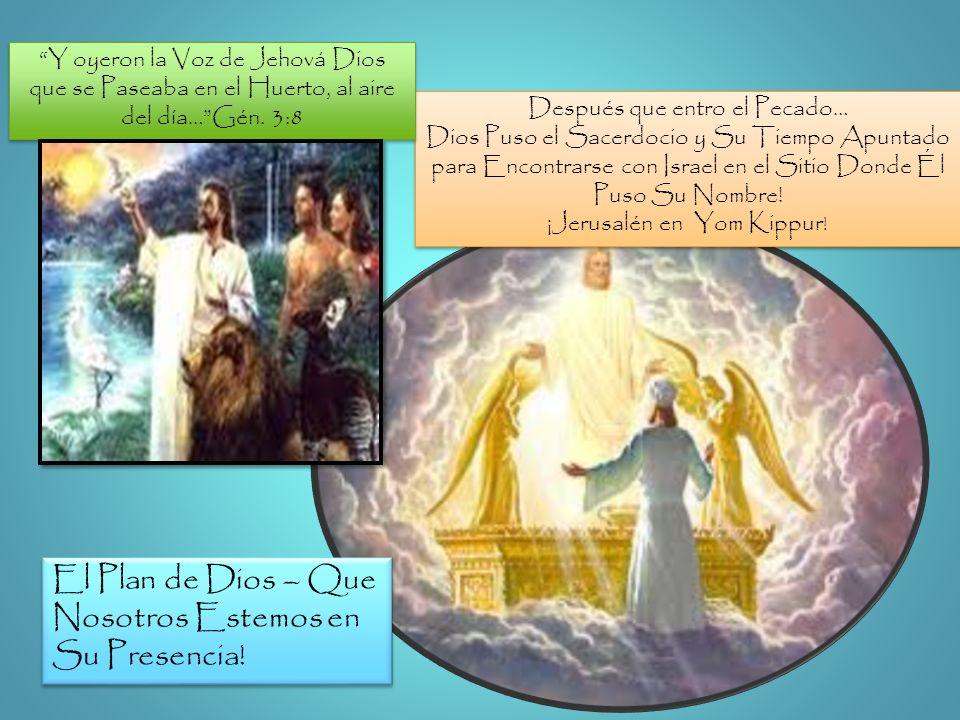 El Plan de Dios – Que Nosotros Estemos en Su Presencia!