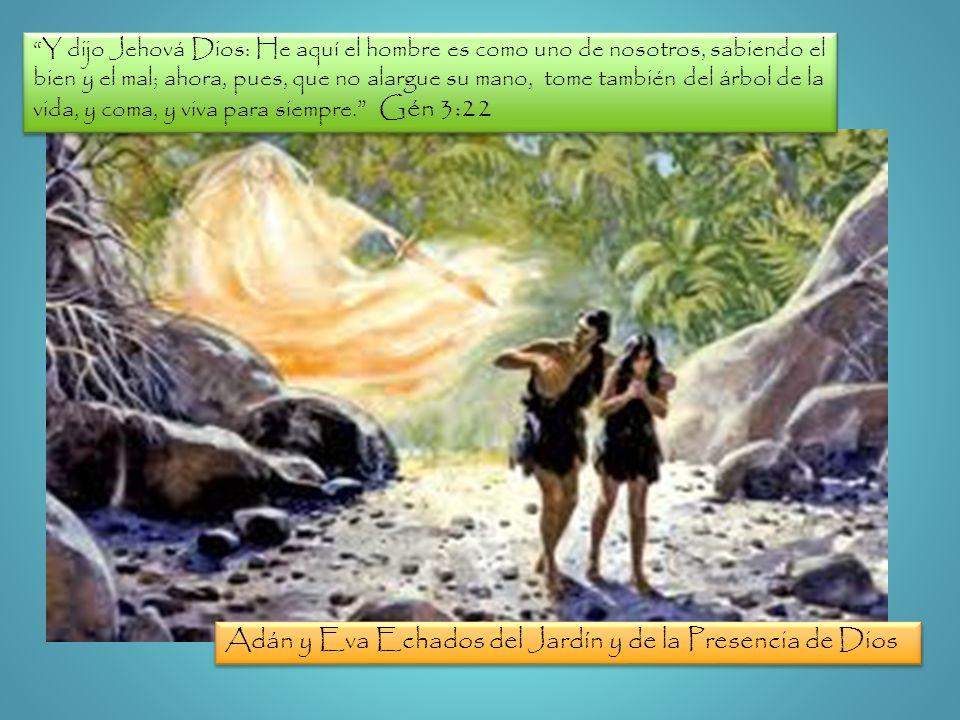 Adán y Eva Echados del Jardín y de la Presencia de Dios
