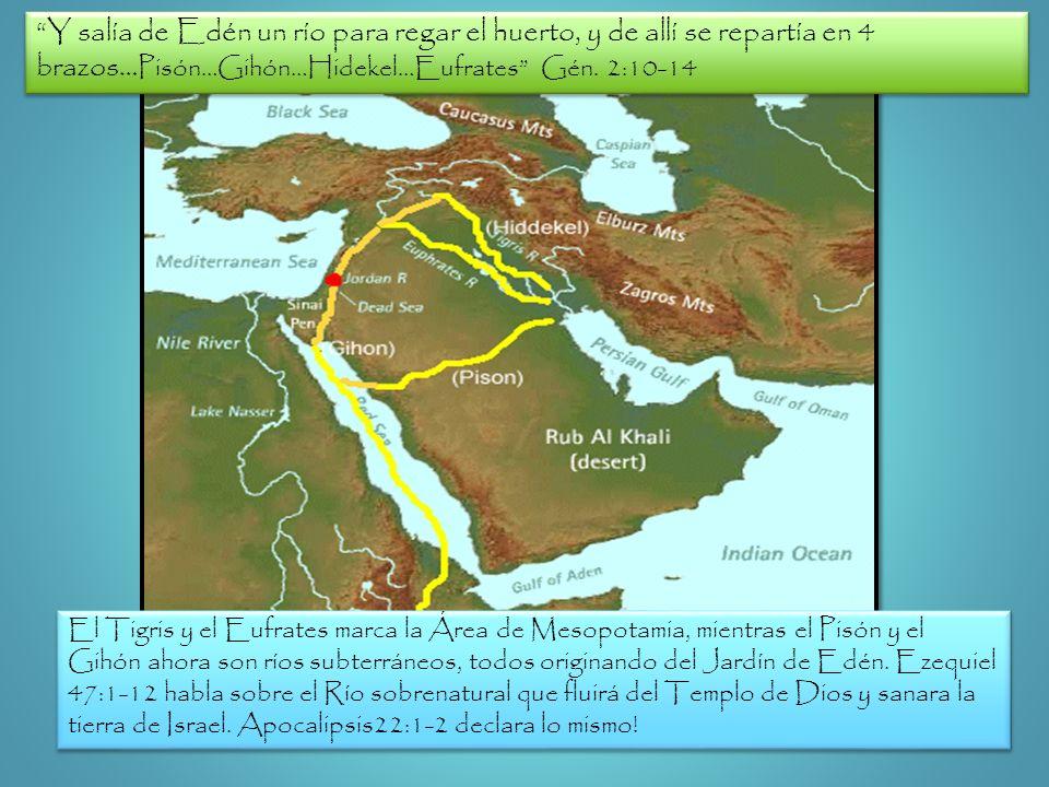 Y salía de Edén un río para regar el huerto, y de allí se repartía en 4 brazos…Pisón…Gihón…Hidekel…Eufrates Gén. 2:10-14