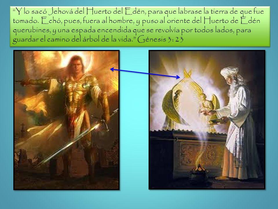 Y lo sacó Jehová del Huerto del Edén, para que labrase la tierra de que fue tomado.