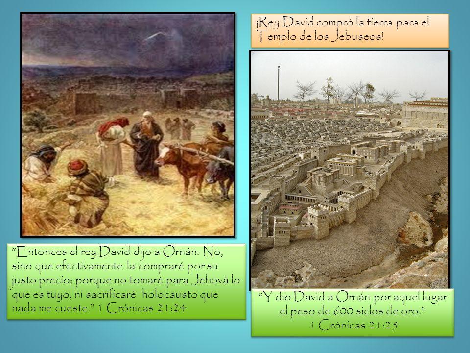Y dio David a Ornán por aquel lugar el peso de 600 siclos de oro.