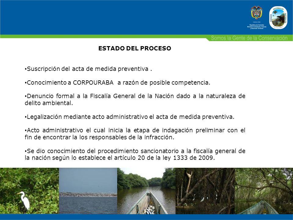 ESTADO DEL PROCESO Suscripción del acta de medida preventiva . Conocimiento a CORPOURABA a razón de posible competencia.