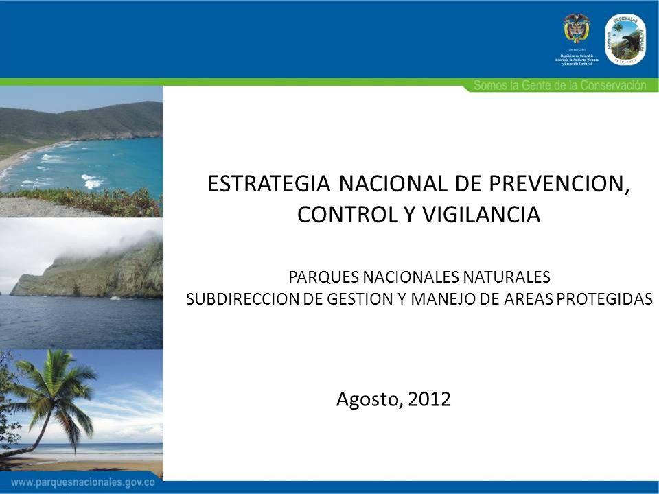 ESTRATEGIA NACIONAL DE PREVENCION, CONTROL Y VIGILANCIA