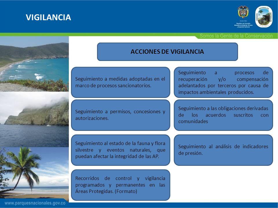 ACCIONES DE VIGILANCIA