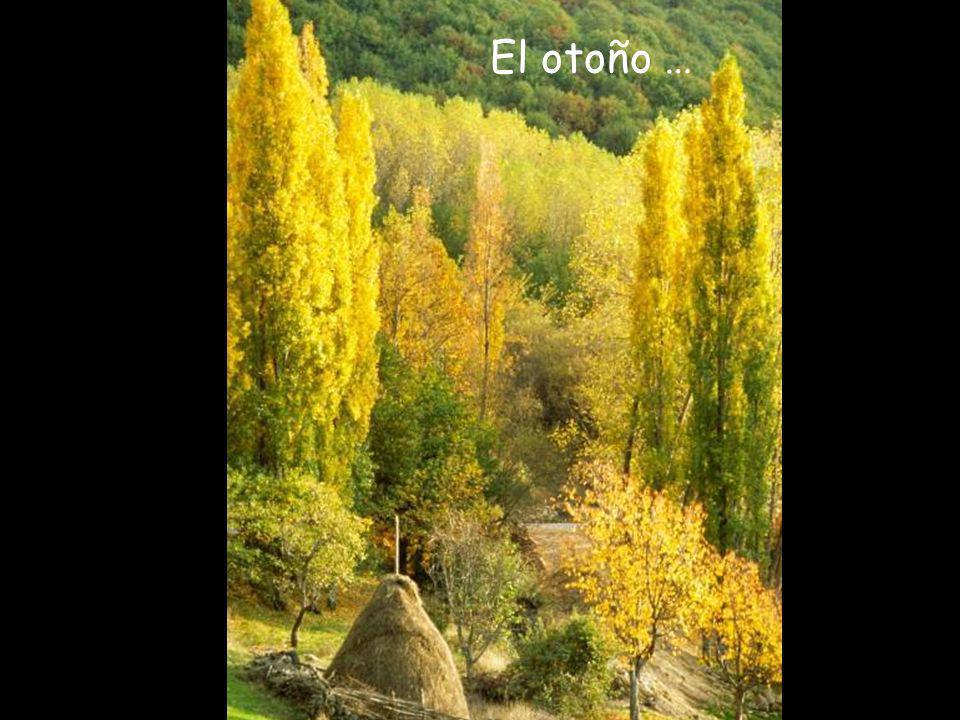 El otoño …
