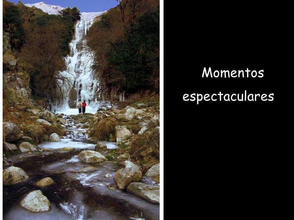 Momentos espectaculares