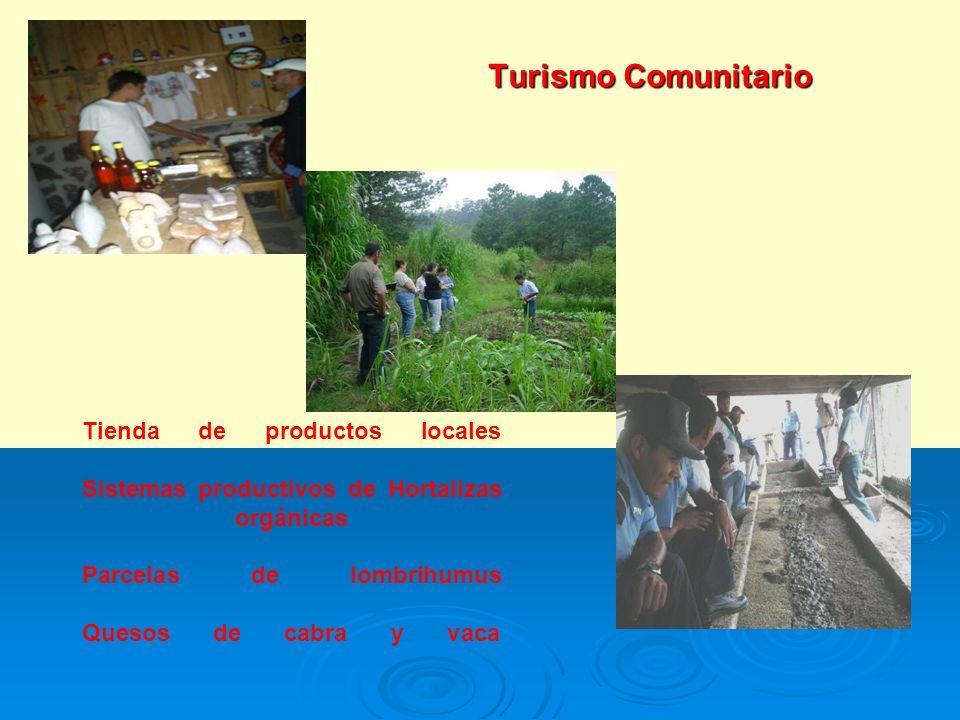 Turismo Comunitario Tienda de productos locales Sistemas productivos de Hortalizas orgánicas Parcelas de lombrihumus Quesos de cabra y vaca.