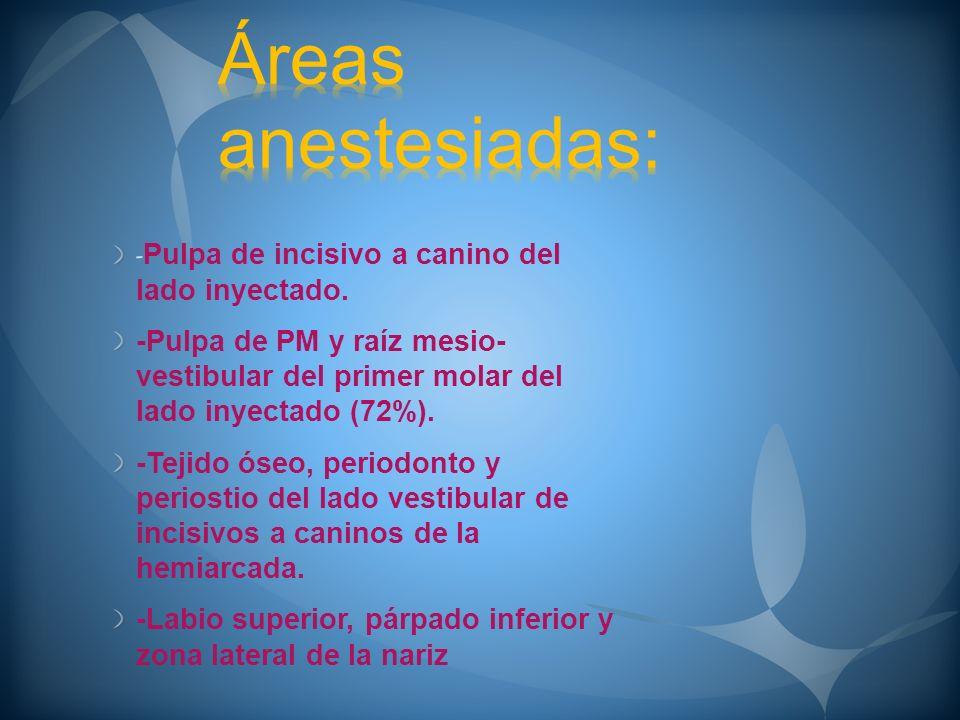 Áreas anestesiadas: -Pulpa de incisivo a canino del lado inyectado.