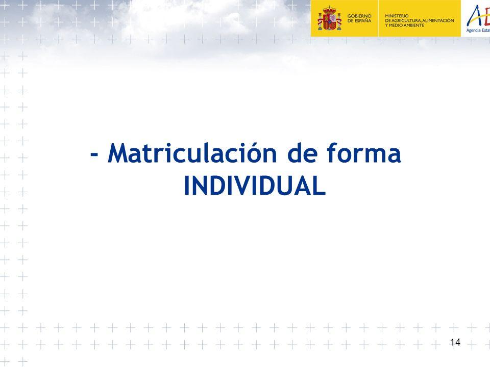 - Matriculación de forma INDIVIDUAL