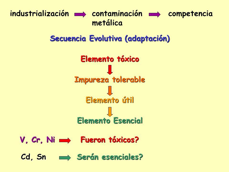 Secuencia Evolutiva (adaptación)