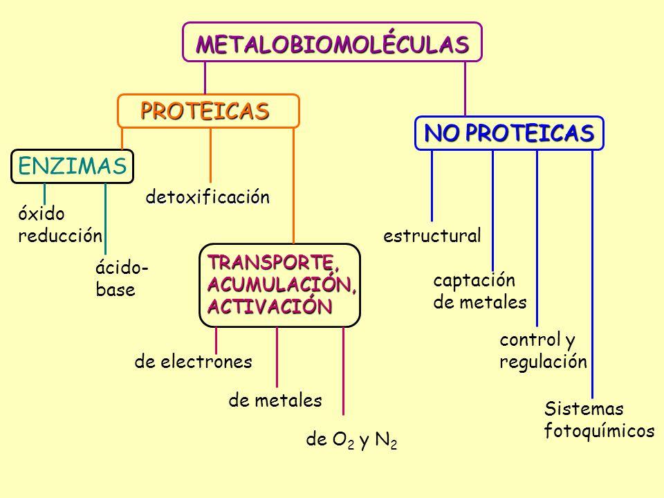 METALOBIOMOLÉCULAS PROTEICAS NO PROTEICAS ENZIMAS detoxificación