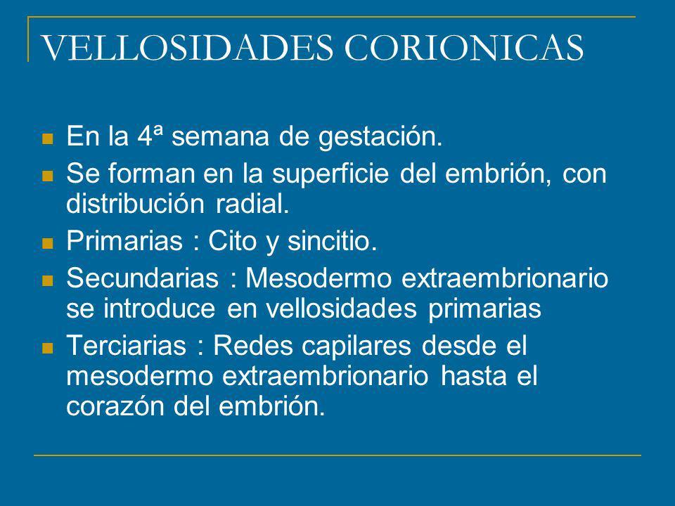 VELLOSIDADES CORIONICAS