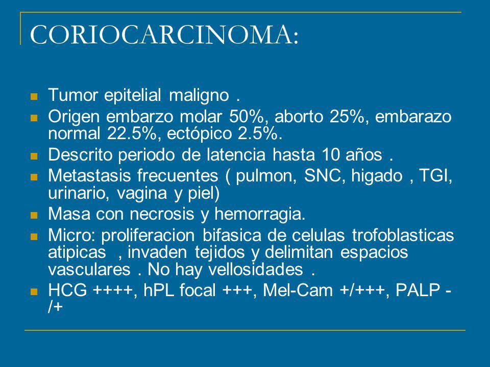 CORIOCARCINOMA: Tumor epitelial maligno .