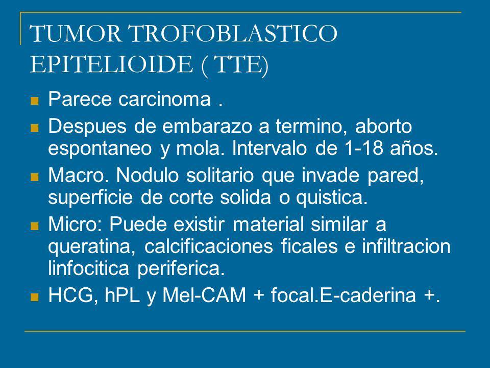 TUMOR TROFOBLASTICO EPITELIOIDE ( TTE)