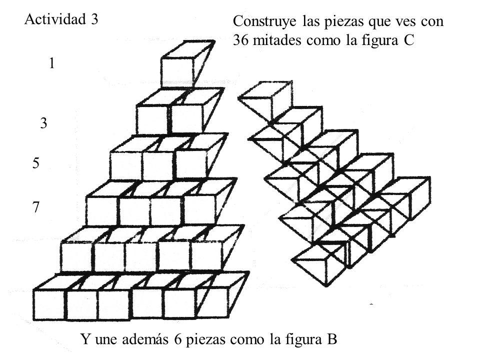 Actividad 3Construye las piezas que ves con 36 mitades como la figura C.